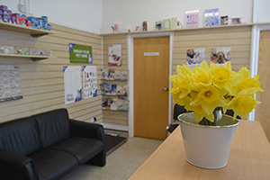 The Upton Veterinary Surgery